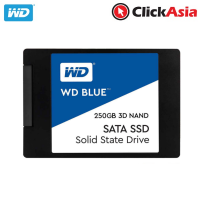 WD Blue 250GB 3D Nand SATA Solid State Drive (WDS250G2B0A)